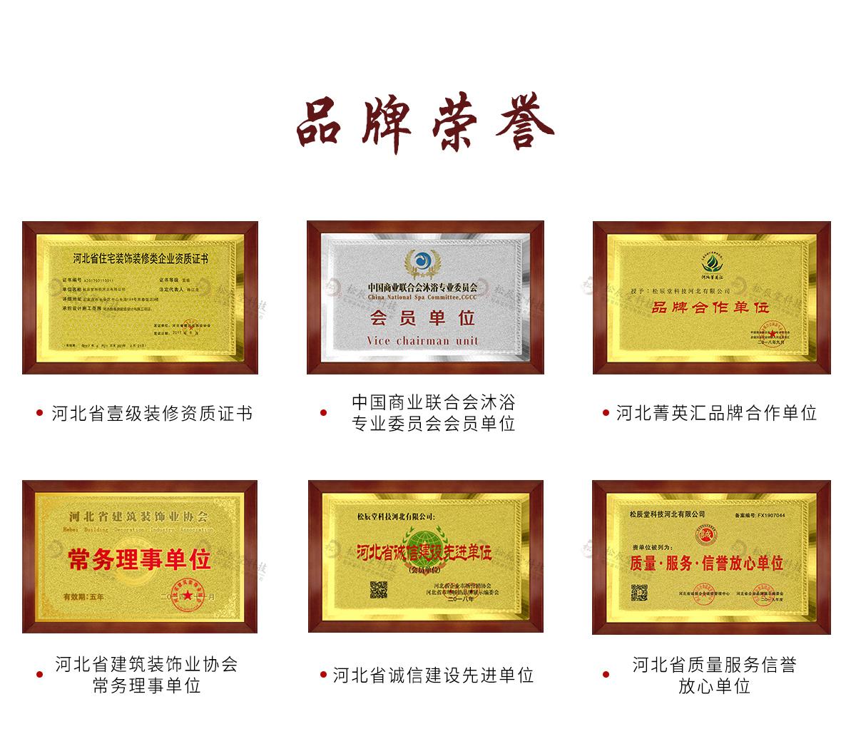 石家庄松辰堂科技河北有限公司荣誉证书